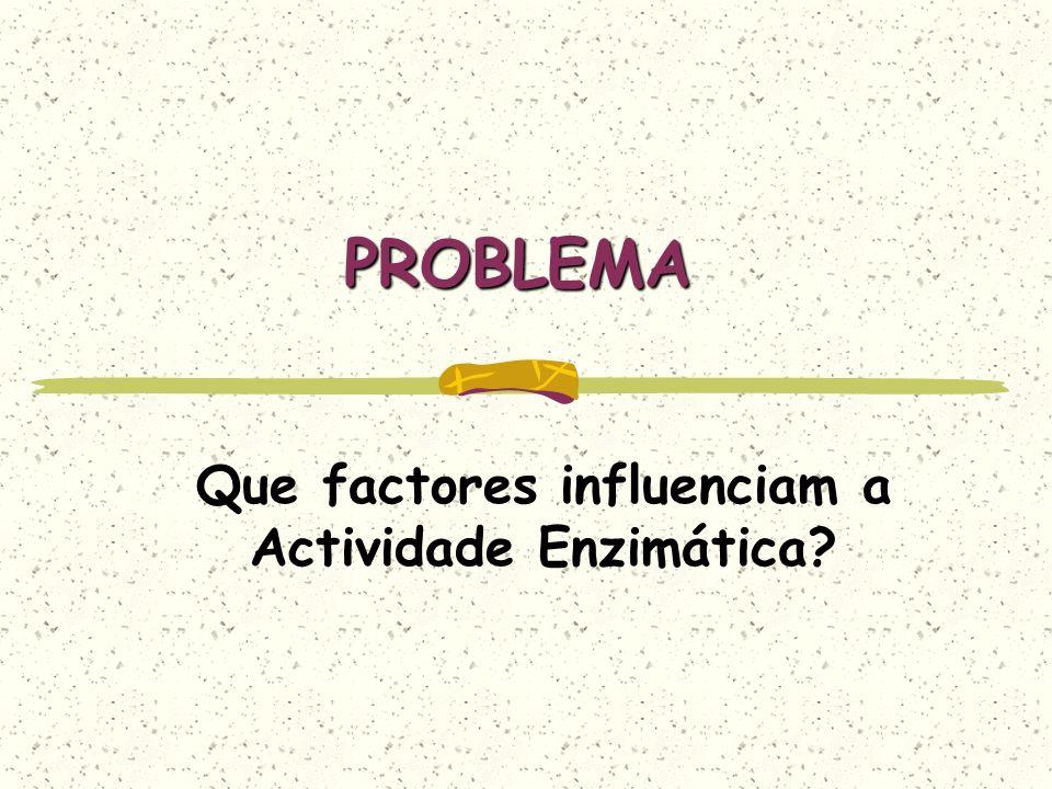 PROBLEMA Que factores influenciam a Actividade Enzimática?