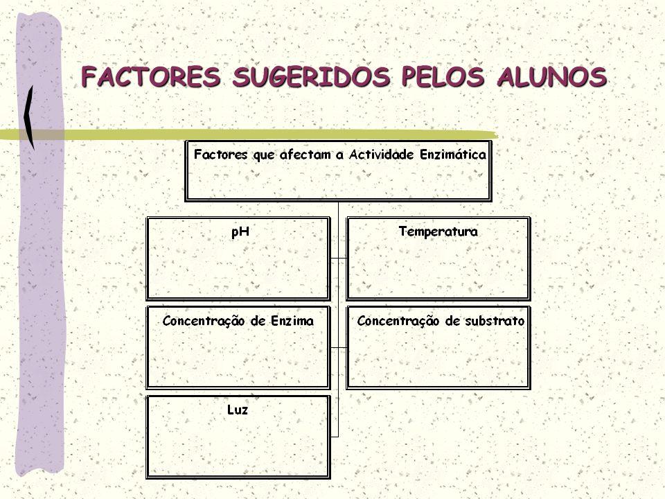 FACTORES SUGERIDOS PELOS ALUNOS