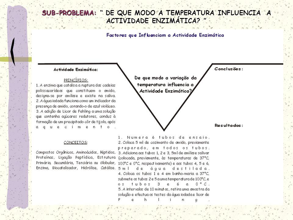 SUB-PROBLEMA: DE QUE MODO A TEMPERATURA INFLUENCIA A ACTIVIDADE ENZIMÁTICA.
