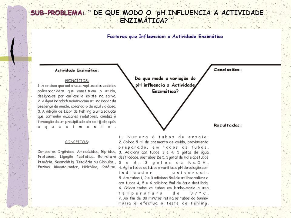 SUB-PROBLEMA: DE QUE MODO O pH INFLUENCIA A ACTIVIDADE ENZIMÁTICA.