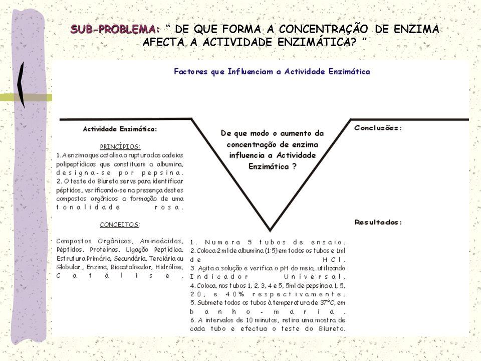 SUB-PROBLEMA: DE QUE FORMA A CONCENTRAÇÃO DE ENZIMA AFECTA A ACTIVIDADE ENZIMÁTICA.
