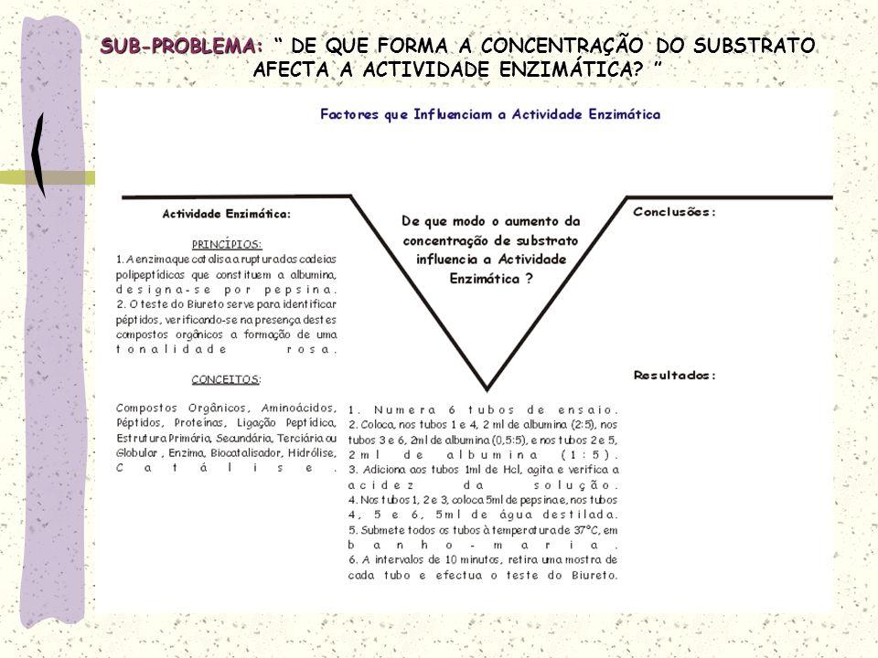 SUB-PROBLEMA: DE QUE FORMA A CONCENTRAÇÃO DO SUBSTRATO AFECTA A ACTIVIDADE ENZIMÁTICA.