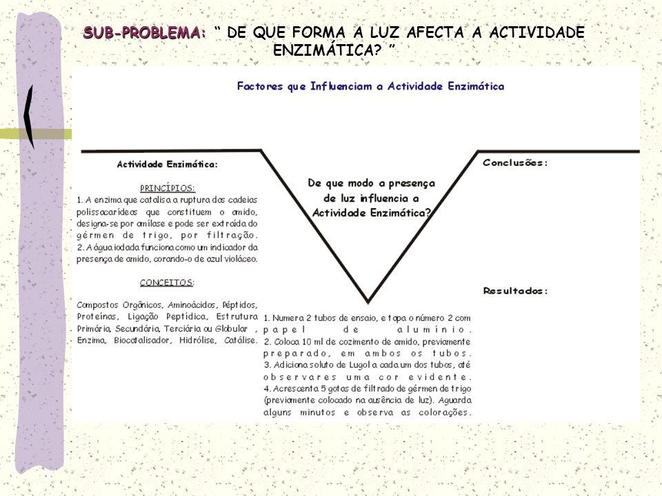 SUB-PROBLEMA: DE QUE FORMA A LUZ AFECTA A ACTIVIDADE ENZIMÁTICA.