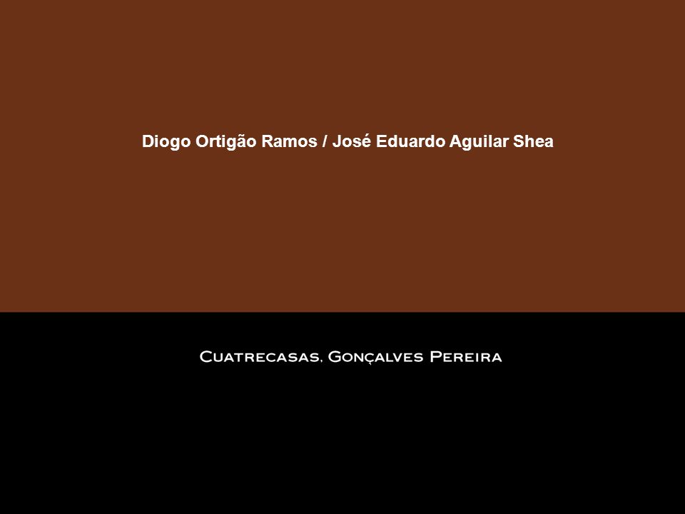 Diogo Ortigão Ramos / José Eduardo Aguilar Shea