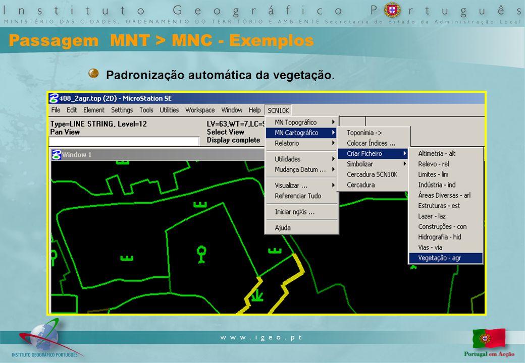 Passagem MNT > MNC - Exemplos Padronização automática da vegetação.