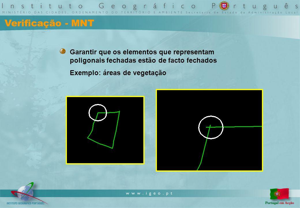 Verificação - MNT Garantir que os elementos que representam poligonais fechadas estão de facto fechados Exemplo: áreas de vegetação