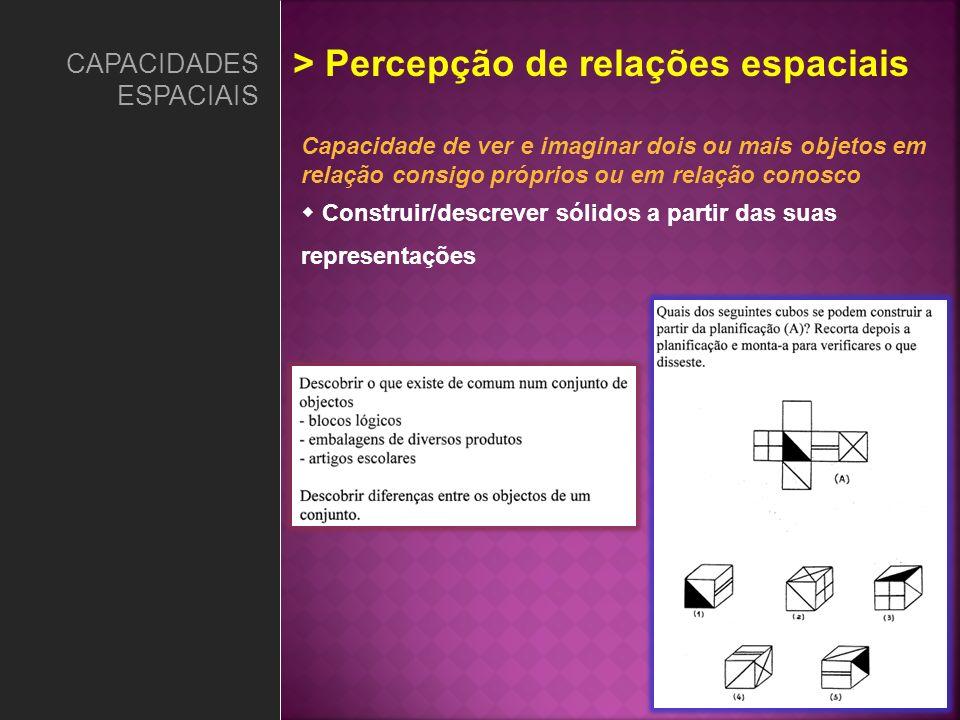 Capacidade de ver e imaginar dois ou mais objetos em relação consigo próprios ou em relação conosco Construir/descrever sólidos a partir das suas repr