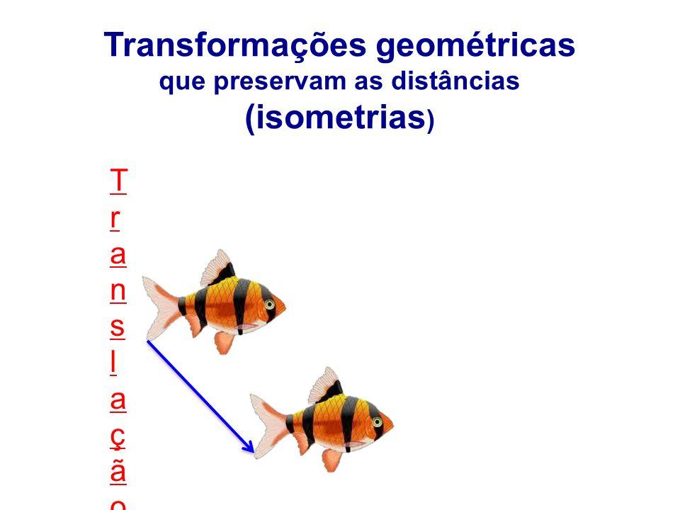 TranslaçãoTranslação Transformações geométricas que preservam as distâncias (isometrias )