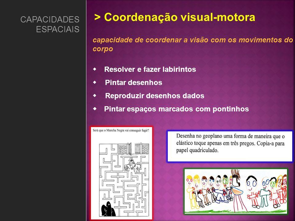 CAPACIDADES ESPACIAIS capacidade de coordenar a visão com os movimentos do corpo Resolver e fazer labirintos Pintar desenhos Reproduzir desenhos dados
