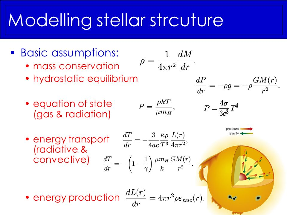 Modelling stellar strcuture Basic assumptions: mass conservation hydrostatic equilibrium equation of state (gas & radiation) energy transport (radiati