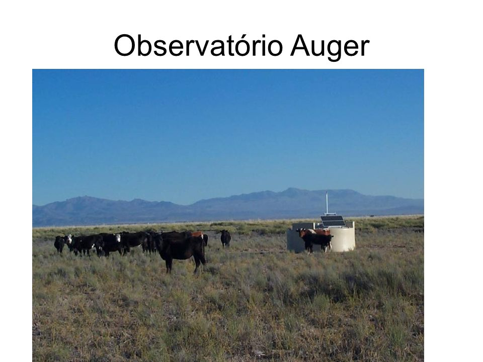 Observatório Auger