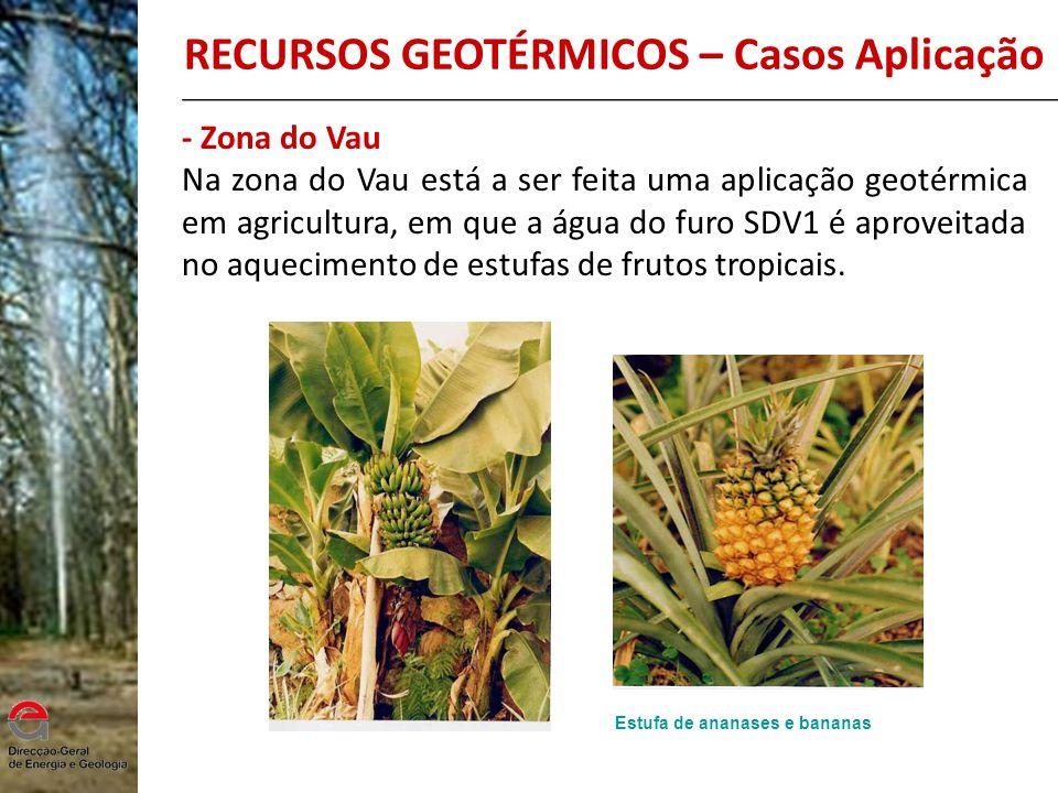 - Zona do Vau Na zona do Vau está a ser feita uma aplicação geotérmica em agricultura, em que a água do furo SDV1 é aproveitada no aquecimento de estu