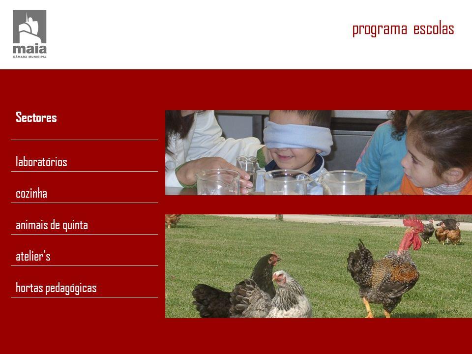 programa escolas Sectores laboratórios cozinha animais de quinta ateliers hortas pedagógicas