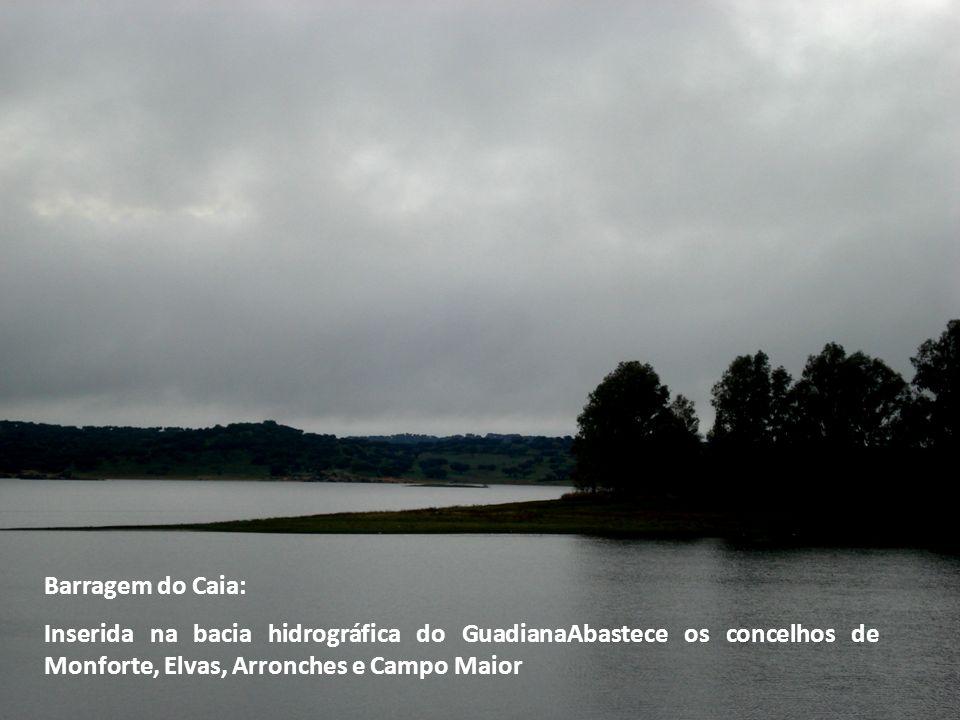 Barragem do Caia: Inserida na bacia hidrográfica do GuadianaAbastece os concelhos de Monforte, Elvas, Arronches e Campo Maior