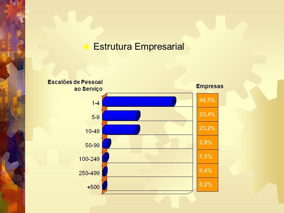 0,2% 0,4% 1,5% 2,9% 23,2% 23,4% 48,5% Escalões de Pessoal ao Serviço Estrutura Empresarial Empresas
