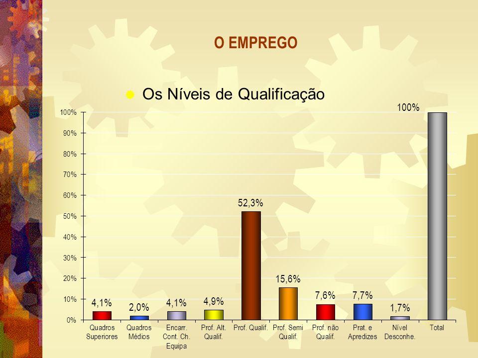 O EMPREGO Os Níveis de Qualificação