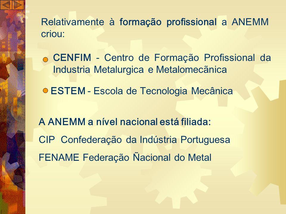Relativamente à formação profissional a ANEMM criou: CENFIM - Centro de Formação Profissional da Industria Metalurgica e Metalomecãnica ESTEM - Escola