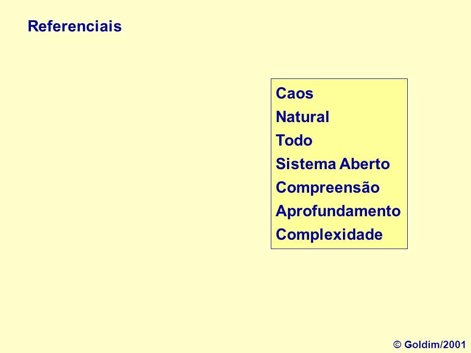 Ordem Artificial Parte Sistema Fechado Informação Generalização Simplicidade Referenciais © Goldim/2001