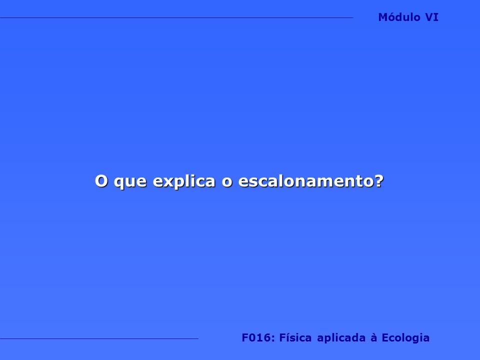 O que explica o escalonamento? Módulo VI F016: Física aplicada à Ecologia