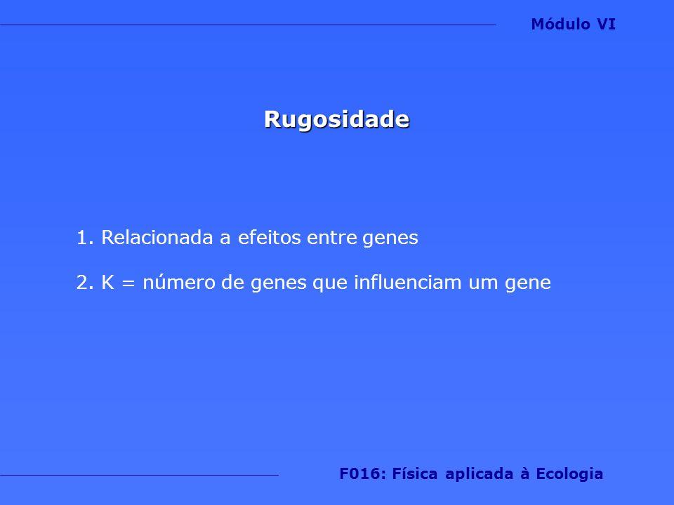 Rugosidade 1.Relacionada a efeitos entre genes 2.K = número de genes que influenciam um gene Módulo VI F016: Física aplicada à Ecologia