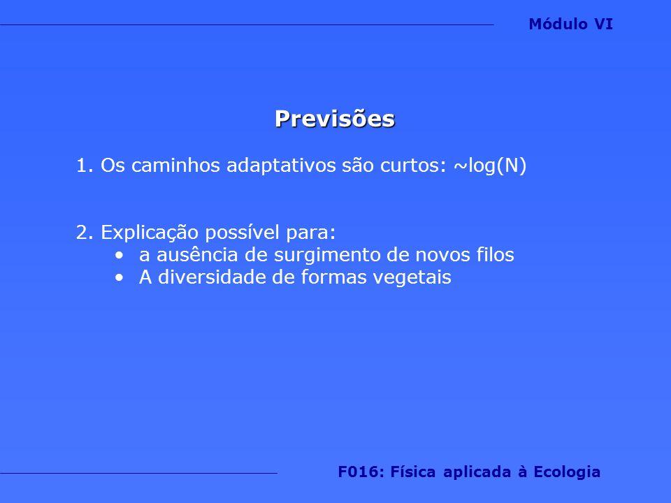 Previsões 1.Os caminhos adaptativos são curtos: ~log(N) 2.Explicação possível para: a ausência de surgimento de novos filos A diversidade de formas ve