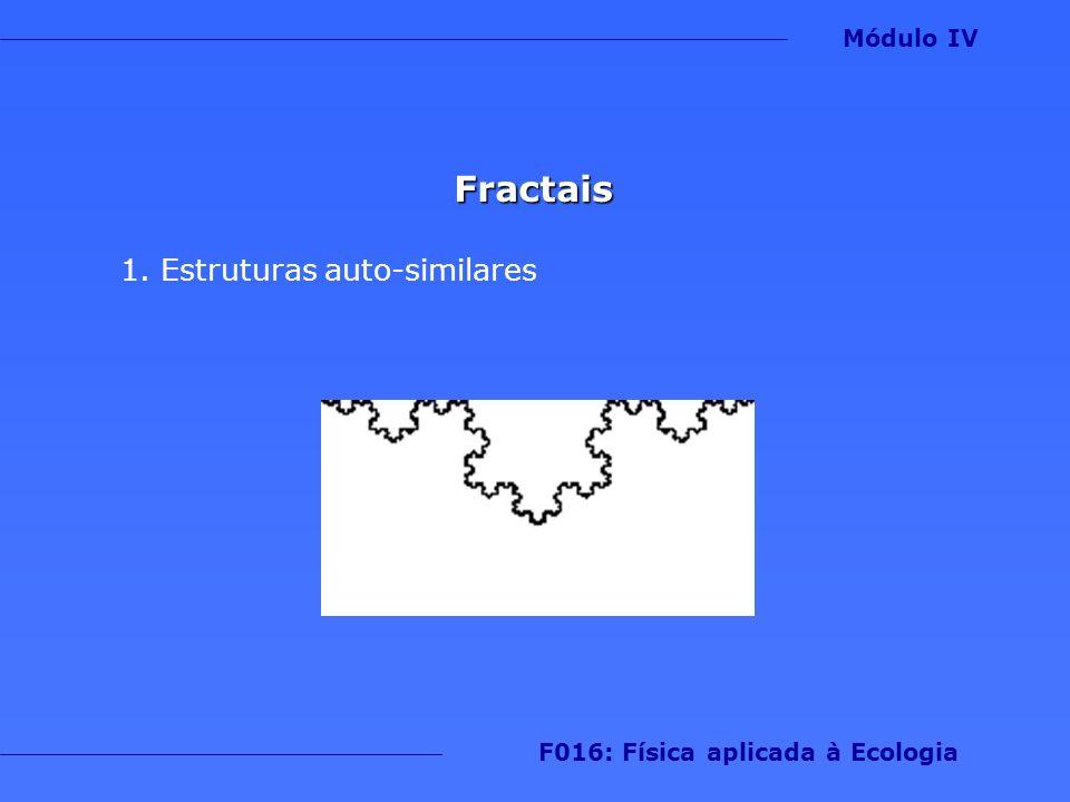 Fractais 1.Estruturas auto-similares Módulo IV F016: Física aplicada à Ecologia