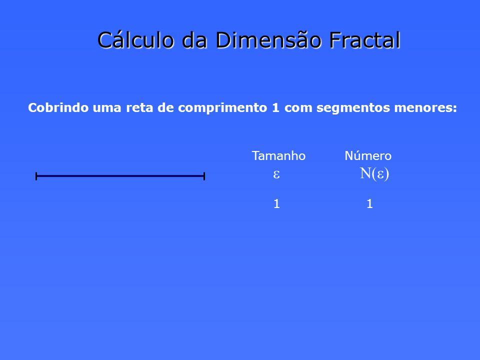 Cálculo da Dimensão Fractal Cobrindo uma reta de comprimento 1 com segmentos menores: Tamanho Número e N(e) 1 1