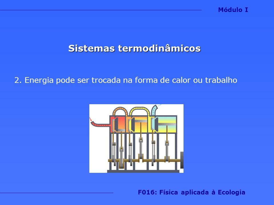 A energia do sistema está baseada em dois aspectos 1.Movimento das partículas (energia cinética) 2.Potencial de interação entre as partículas (energia potencial) Módulo I F016: Física aplicada à Ecologia