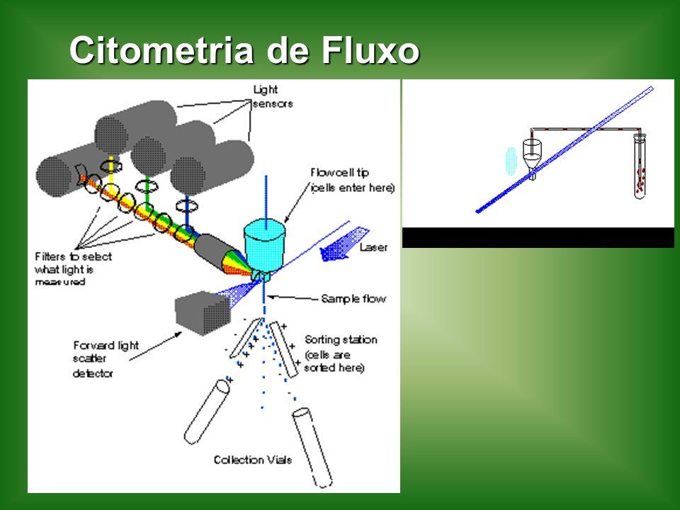 Citometria de Fluxo