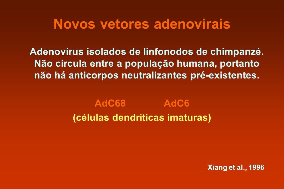 Novos vetores adenovirais Adenovírus isolados de linfonodos de chimpanzé. Não circula entre a população humana, portanto não há anticorpos neutralizan
