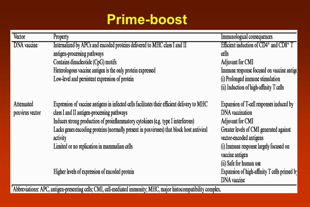 Prime-boost