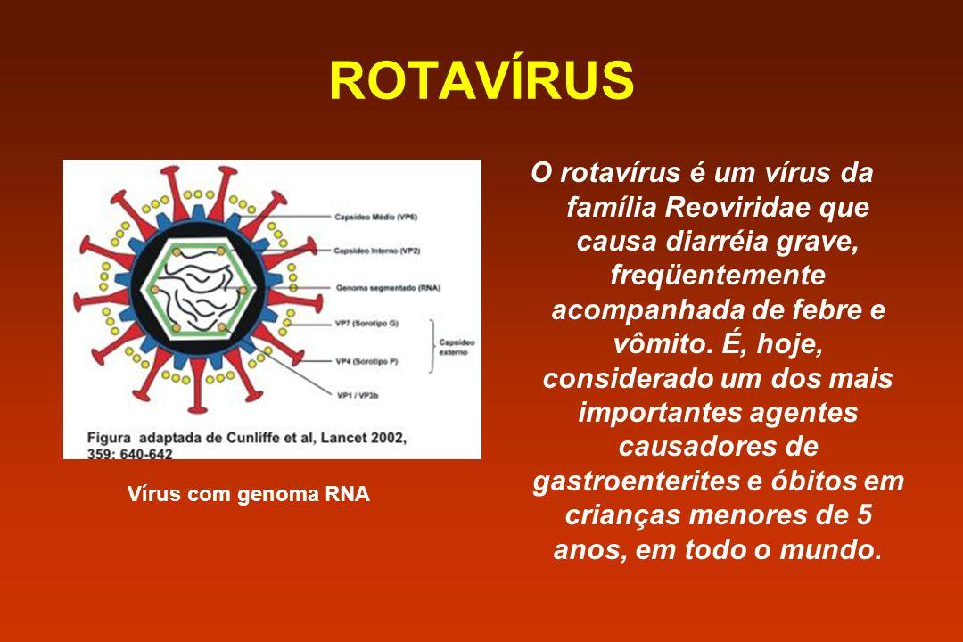 ROTAVÍRUS Vírus com genoma RNA O rotavírus é um vírus da família Reoviridae que causa diarréia grave, freqüentemente acompanhada de febre e vômito. É,
