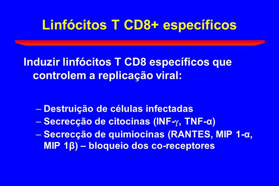 Linfócitos T CD8+ específicos Induzir linfócitos T CD8 específicos que controlem a replicação viral: –Destruição de células infectadas –Secrecção de c