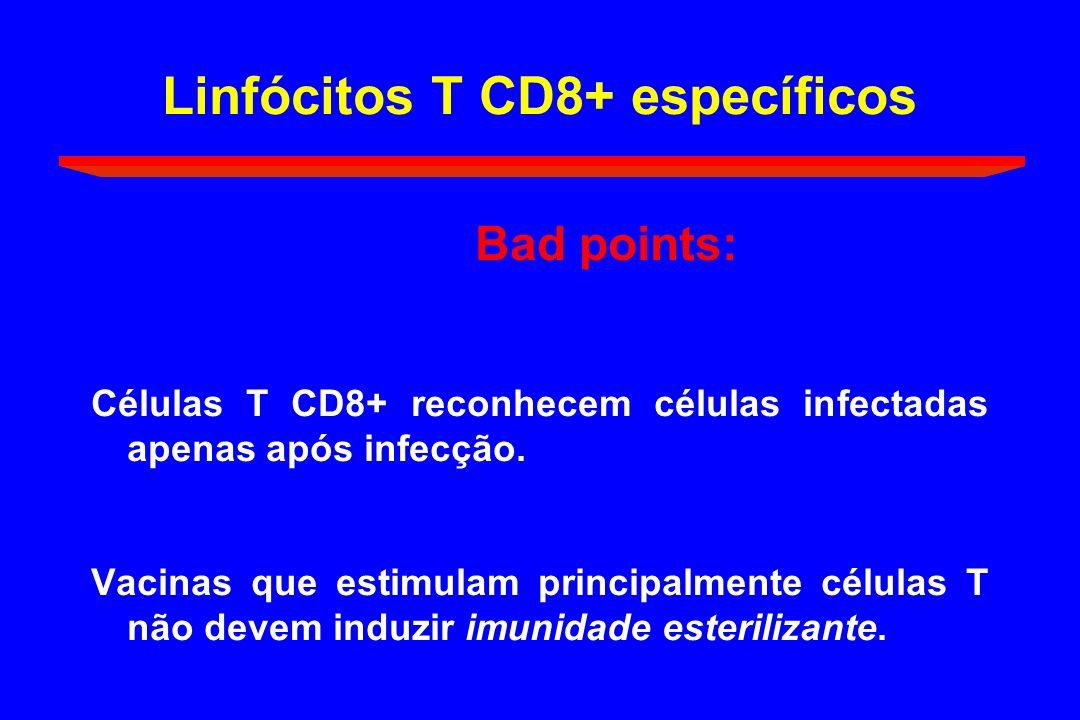 Linfócitos T CD8+ específicos Bad points: Células T CD8+ reconhecem células infectadas apenas após infecção. Vacinas que estimulam principalmente célu
