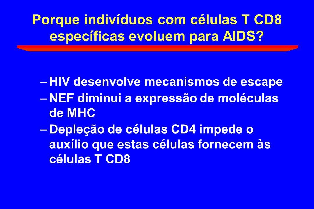 Porque indivíduos com células T CD8 específicas evoluem para AIDS? –HIV desenvolve mecanismos de escape –NEF diminui a expressão de moléculas de MHC –