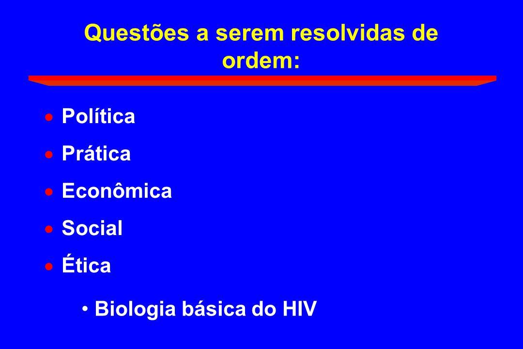 Questões a serem resolvidas de ordem: Política Prática Econômica Social Ética Biologia básica do HIV