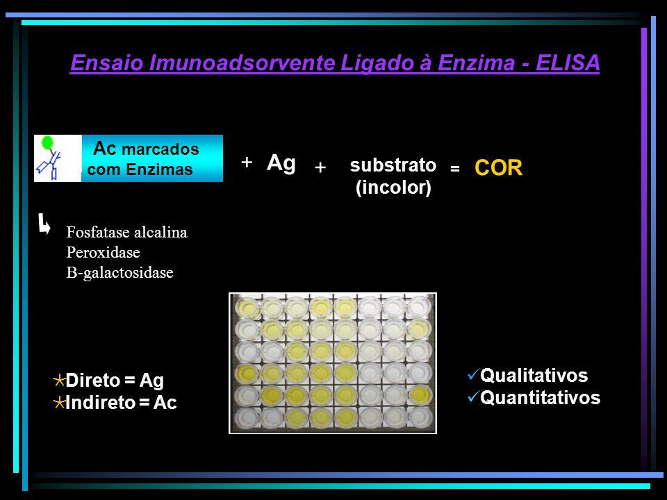Ensaio Imunoadsorvente Ligado à Enzima - ELISA substrato (incolor) Qualitativos Quantitativos Direto = Ag Indireto = Ac Ac marcados com Enzimas + + =