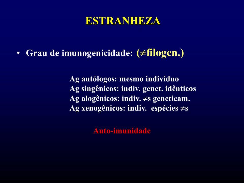 ESTRANHEZA Grau de imunogenicidade: ( filogen.) Ag autólogos: mesmo indivíduo Ag singênicos: indiv. genet. idênticos Ag alogênicos: indiv. s geneticam