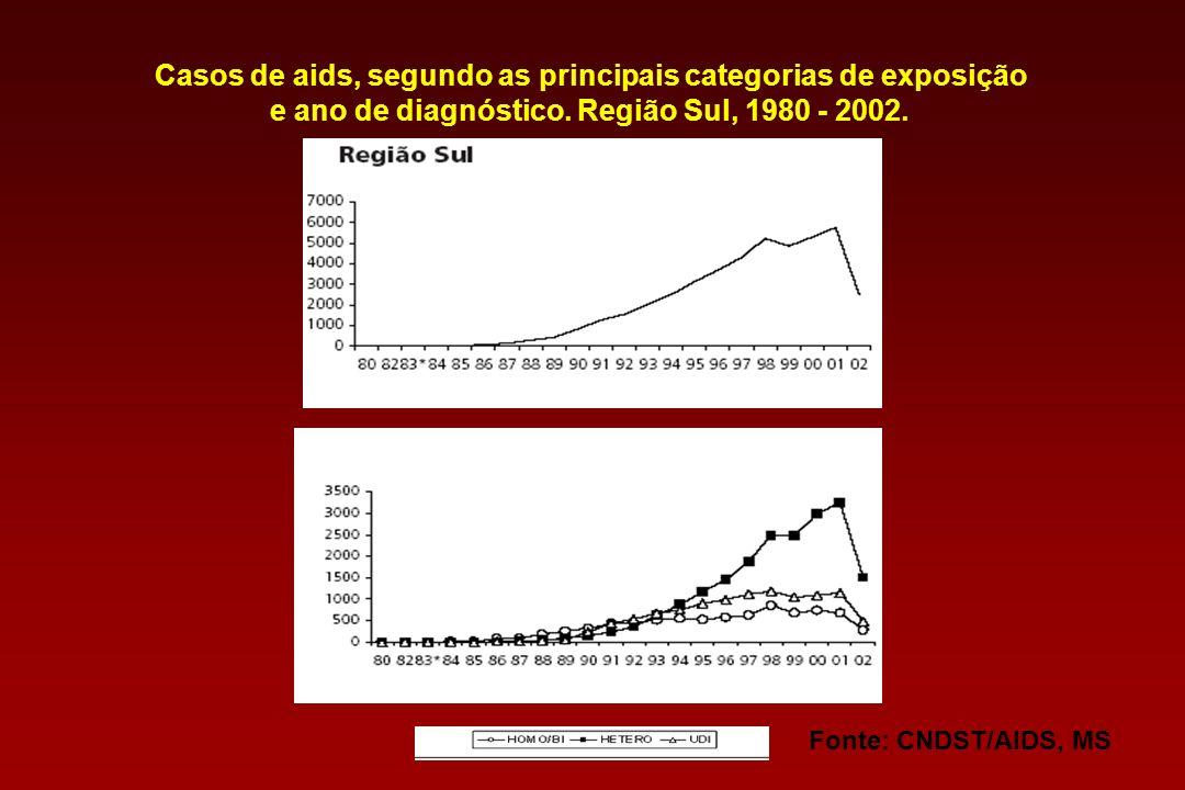 Fonte: CNDST/AIDS, MS Casos de aids, segundo as principais categorias de exposição e ano de diagnóstico. Brasil, 1980-2002*