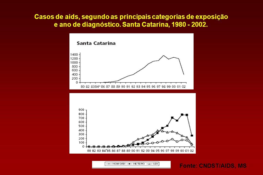 Casos de aids, segundo as principais categorias de exposição e ano de diagnóstico. Região Sul, 1980 - 2002. Fonte: CNDST/AIDS, MS