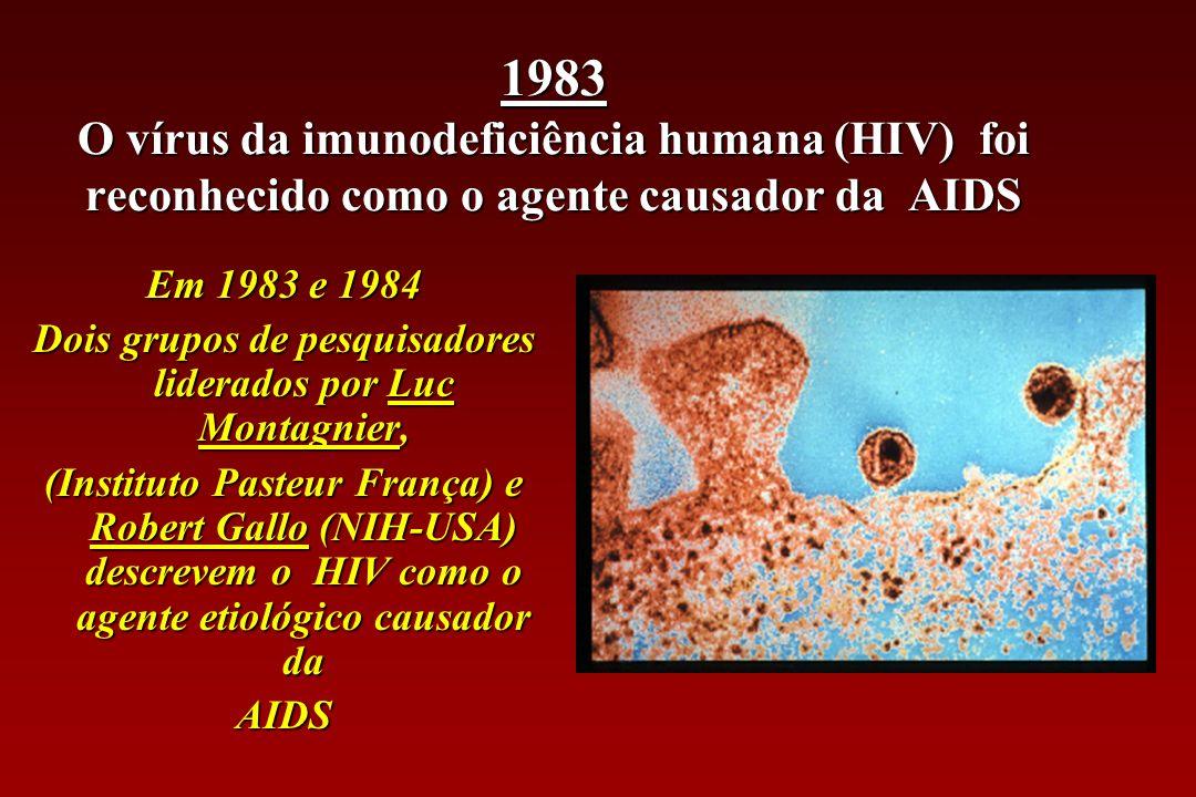 Junho 1981 Os primeiros casos de AIDS descritos nos EUA (antes da descoberta da causa da doença)