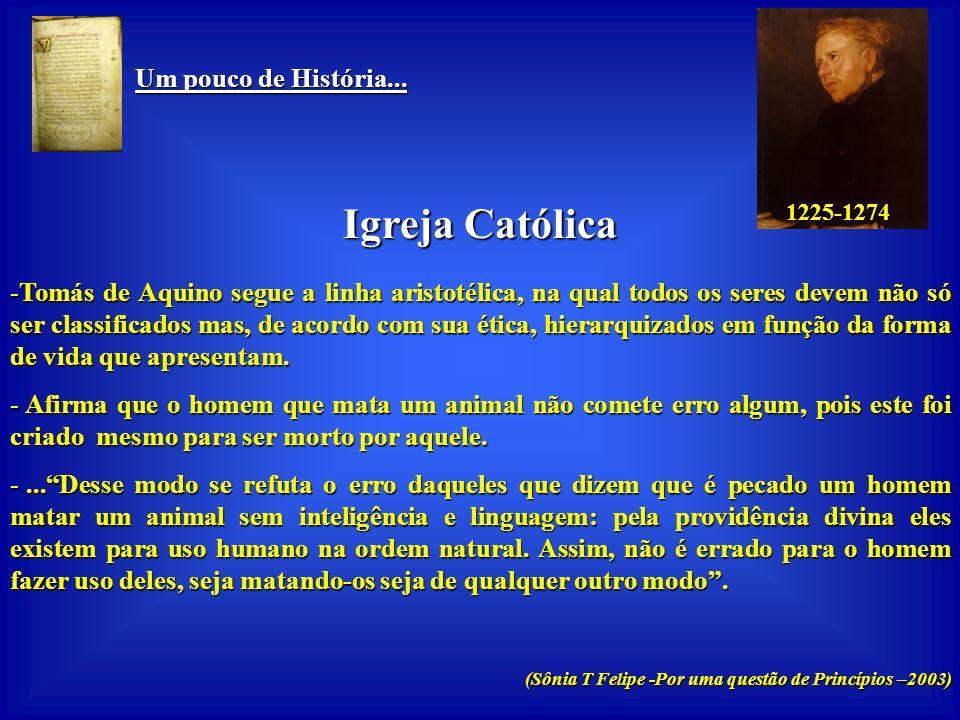 Um pouco de História... Um pouco de História... Igreja Católica -Preserva a tradição religiosa judaica, da filosofia aristotélica e do domínio romano,