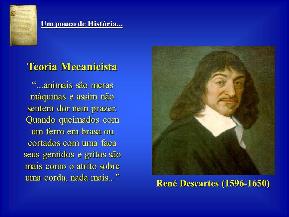 Um pouco de História... Um pouco de História... René Descartes (1596-1650) René Descartes (1596-1650) Teoria Mecanicista Homens se diferenciam de anim
