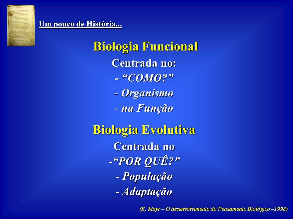 Um pouco de História... Um pouco de História... Biologia Funcional Biologia Funcional -Essencialmente Experimental - Explicativa e Generalizante - Qua