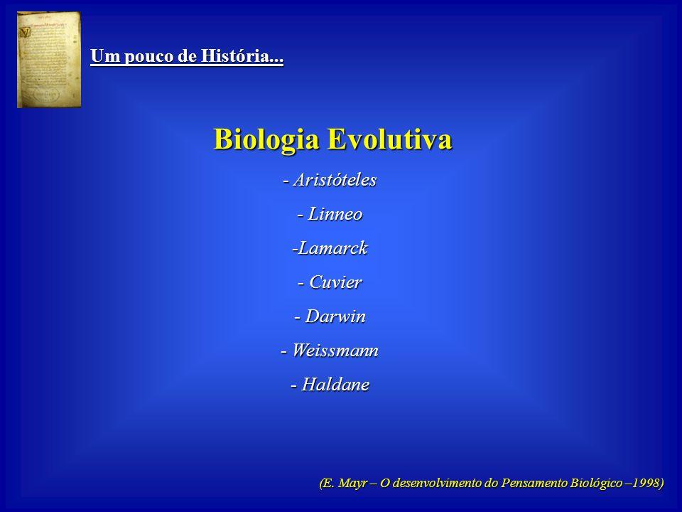 Um pouco de História... Um pouco de História... Biologia Funcional Biologia Funcional - Hipócrates - Galeno -Vesálio - Harvey - Virchow - Claude Berna