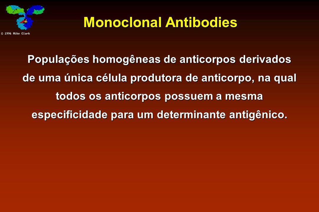 Monoclonal Antibodies Populações homogêneas de anticorpos derivados de uma única célula produtora de anticorpo, na qual todos os anticorpos possuem a