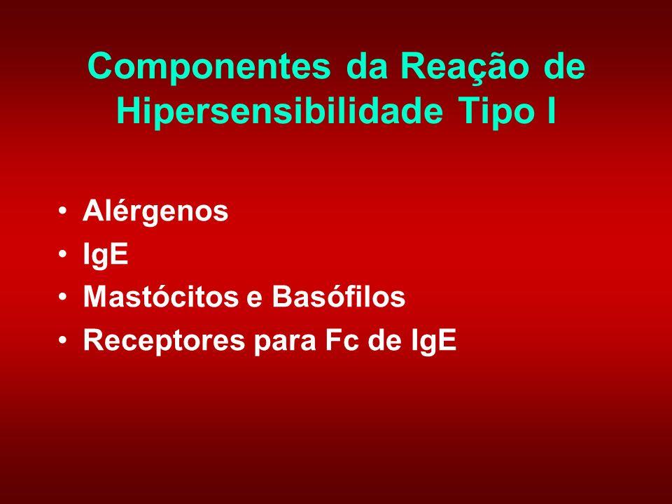 Componentes da Reação de Hipersensibilidade Tipo I Alérgenos IgE Mastócitos e Basófilos Receptores para Fc de IgE