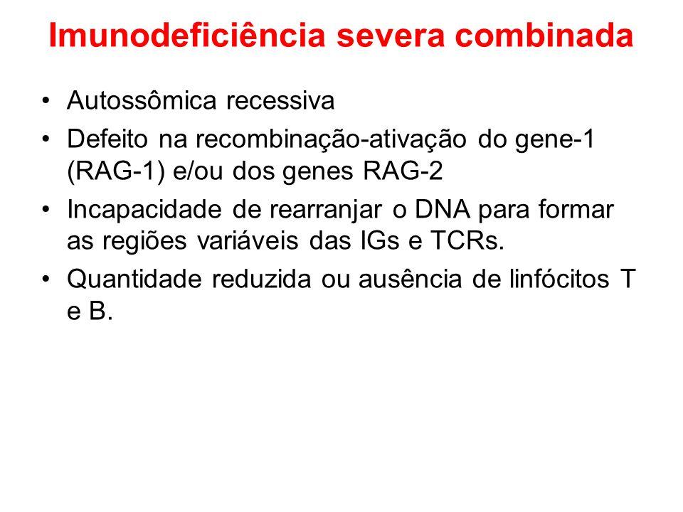 Imunodeficiência severa combinada Autossômica recessiva Defeito na recombinação-ativação do gene-1 (RAG-1) e/ou dos genes RAG-2 Incapacidade de rearra