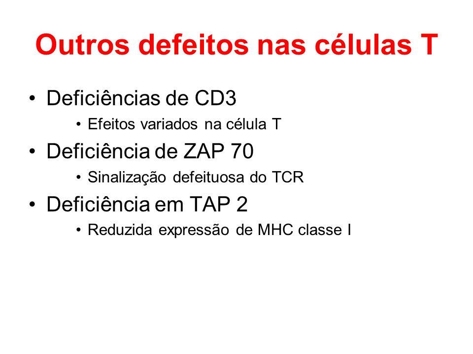 Outros defeitos nas células T Deficiências de CD3 Efeitos variados na célula T Deficiência de ZAP 70 Sinalização defeituosa do TCR Deficiência em TAP