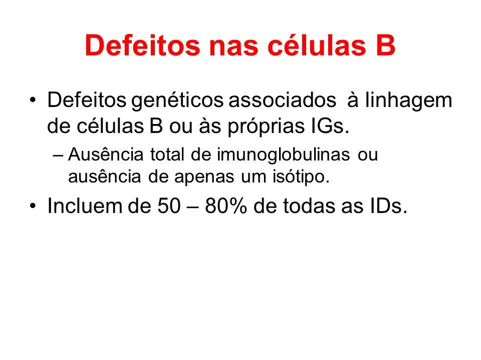 Defeitos nas células B Defeitos genéticos associados à linhagem de células B ou às próprias IGs. –Ausência total de imunoglobulinas ou ausência de ape